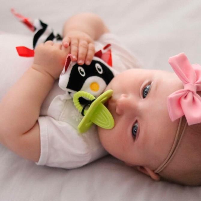 Juguete bebé - portacupetes mapache